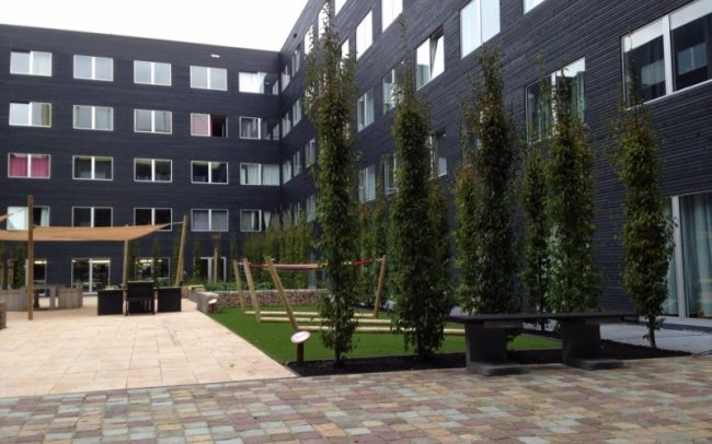 bouwsupport 1 projectmanagement baarn ravel residence amstelhome